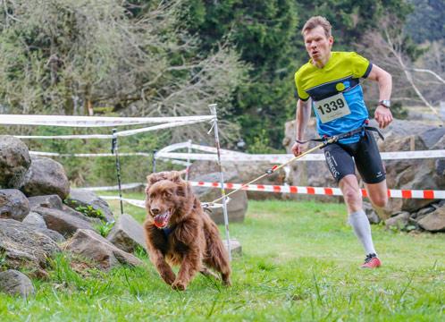 Klettergurt Hund : Terminhinweis trailrun mit hund der arion sachsen cup canicross